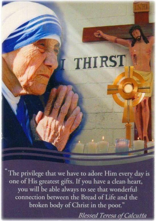40 days for life prayer guide