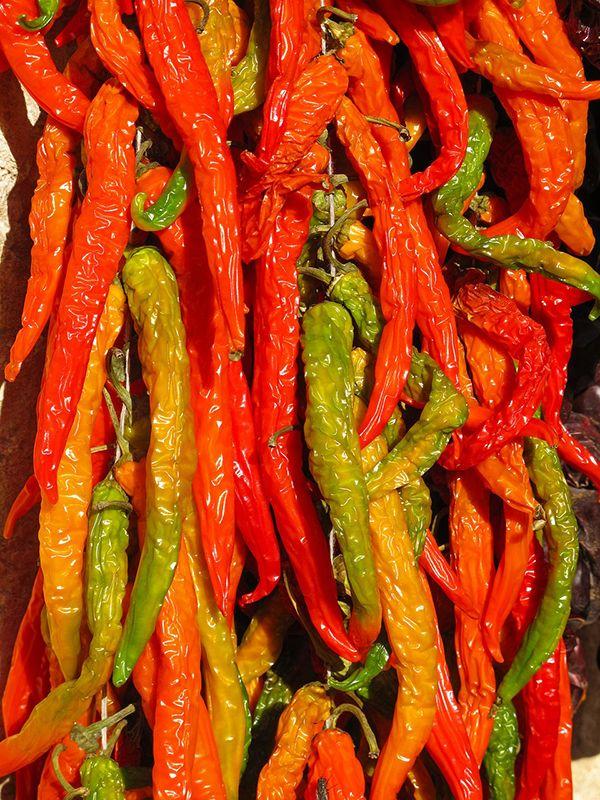 Punaisten chilien lisäksi tunnetaan keltaisia, vihreitä, violetteja ja lähes mustanpuhuvia lajeja ja lajikkeita. Muodoltaan chilit voivat olla pyöreitä, pitkulaisia, kapeita tai leveämpiä ja pinta voi olla sileä, mutkainen tai jopa ryppyinen.