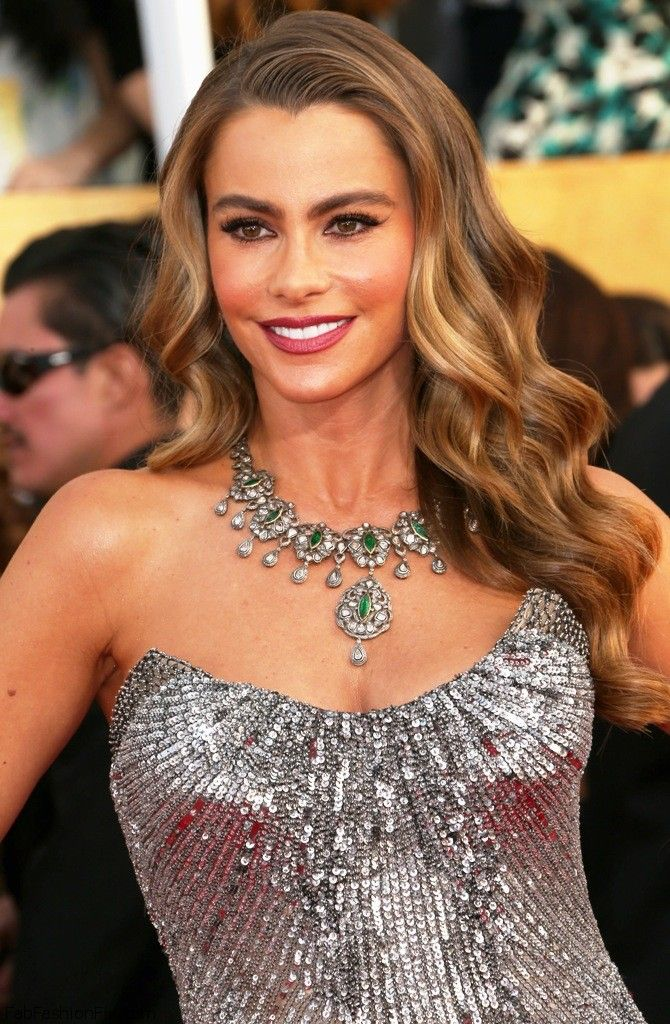 Sofia Vergara in Donna Karan dress at 2014 SAG Awards