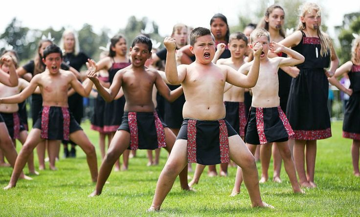 The arguments for compulsory Māori language classes in schools are compelling, yet some insist it means the sky is falling, writes Don Rowe.   Less than eight months out from the first post-Teflon-John election, the Green Party has placedte reo Māori at the centre oftheir campaign, calling for