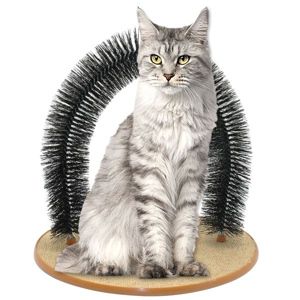 Purrfect Arch: Cat Groomer