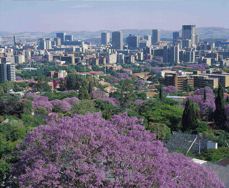 Johannesburg - where I was born and where I live