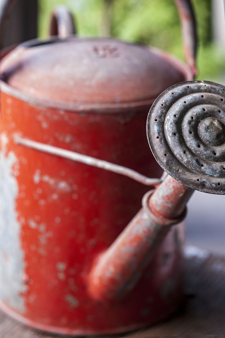 Red   Rosso   Rouge   Rojo   Rød   赤   Vermelho   Color   Colour   Texture   Form   Pattern   Design   Vintage garden watering can
