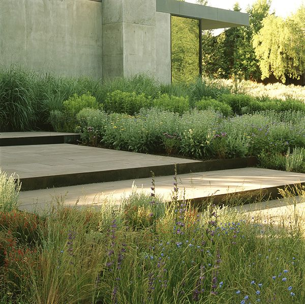 a muted palette of native plants harmonize with stepped terraces of stone and Corten steel, concrete walls and reflective glass at this residence in Wood River Valley, Ketchum, Idaho. Landscape designed by Lutsko Associates