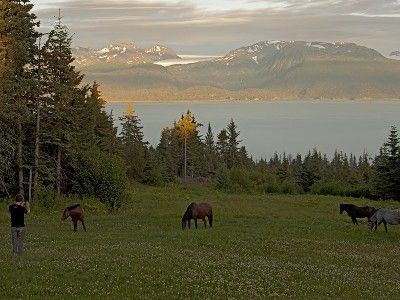 Kilcher homestead, Alaska.