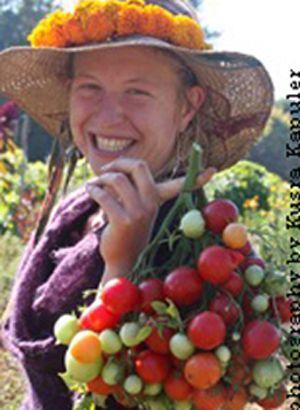 Geranium kiss - Cette variété fantastique produit trois ou quatre super-grappes de 10 à 25 tomates-cerises rouges de 30 grammes. Plantes à la croissance déterminée de 60 cm de hauteur. Très grande résistance au mildiou.