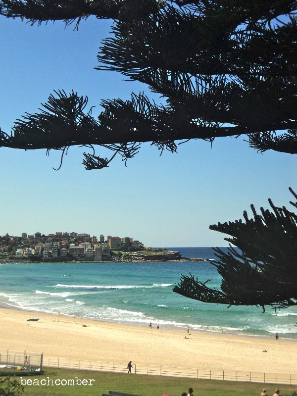 Bondi beach in Australia :) we had a windy cold day here but was still a nice place to visit