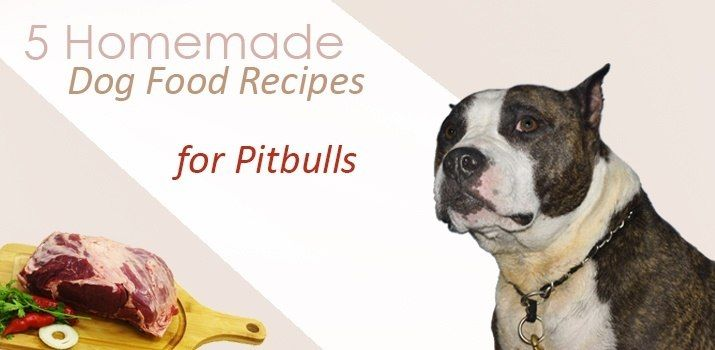 Homemade Dog Food Recipes For Pitbulls Dog Food Recipes