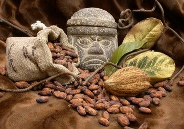 Centros de mesa mazorca cacao