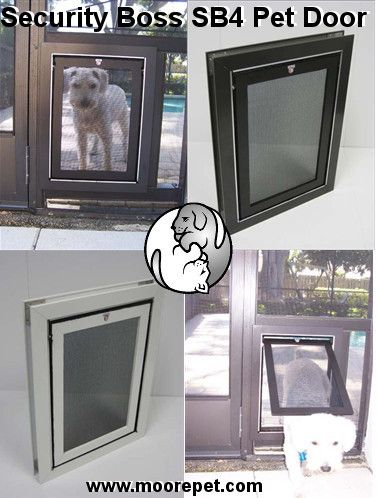 Best 25 Pet Screen Door Ideas On Pinterest Dog Screen