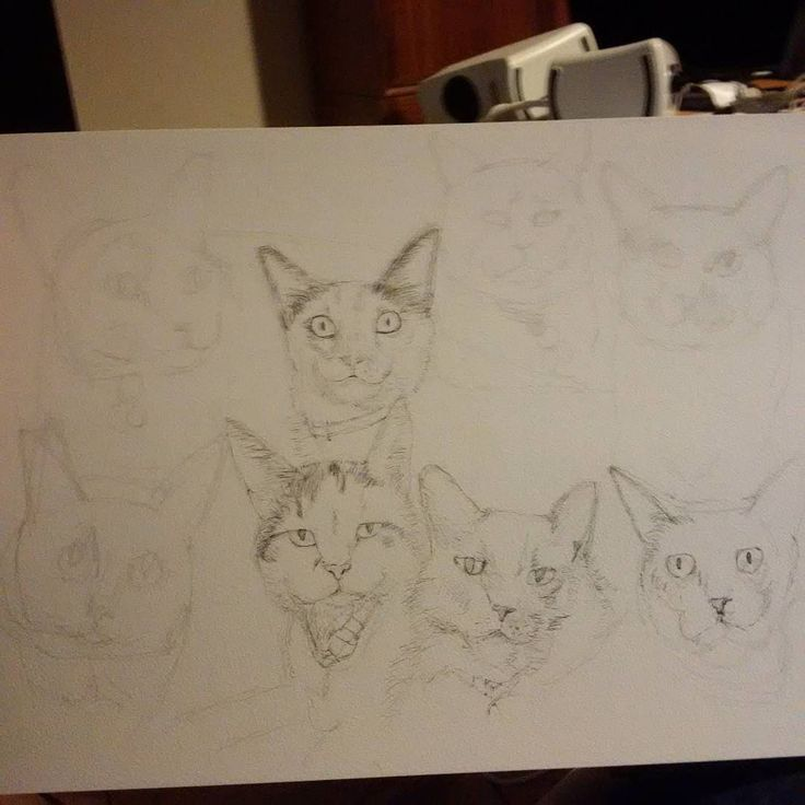 Working on a big #group #portrait for @kittiesblue  See more #commissions at http://tclausen.net #drawing #cat #catlover #twitter #catsofinstagram #catstagram #petstagram #petart #petsofinstagram