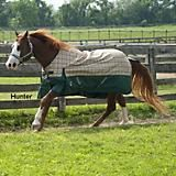 #Blankets galore! Find the perfect fit for your #horse! :)