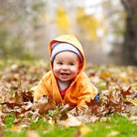 Autumn-Inspired Baby Names  Parents Connect