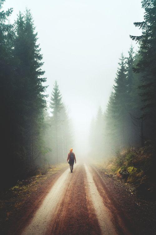 exploring, fog