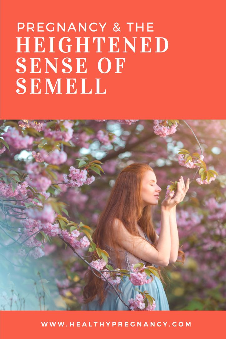 Why do women suddenly have a dramatically heightened sense of smell when they become pregnant? Here's a look at why women get a heightened sense of smell during their pregnancy.