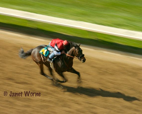 Shadow Chaser, thoroughbred horse racing, fine art photography on Etsy, $38.00