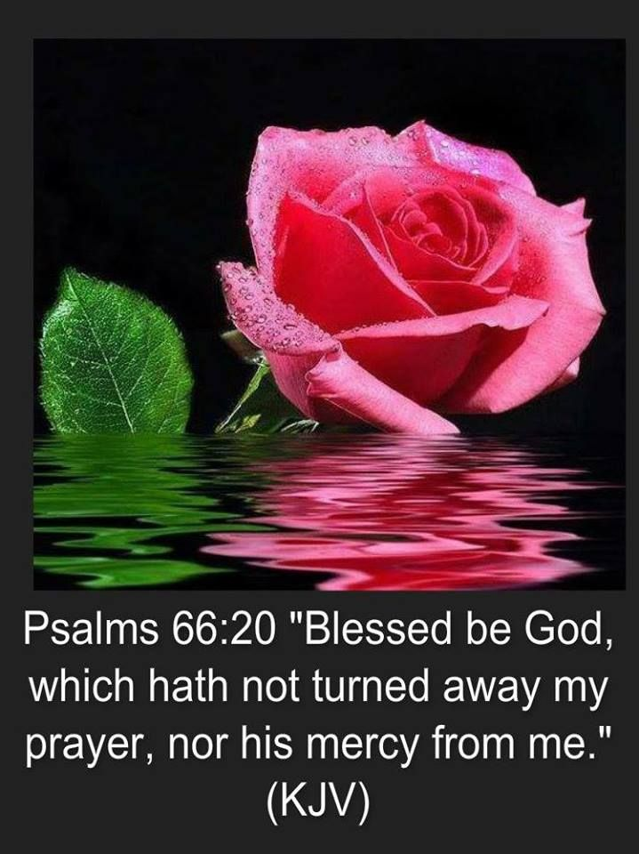 #AdventistChurch Psalms 66:20 http://www.sdahymnal.net/