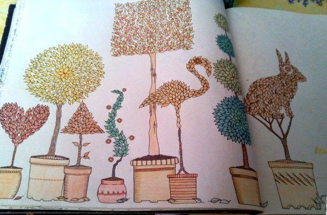 Coloriage jardin secret 12