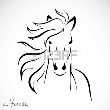 an horse on white background  photo