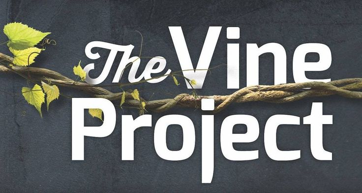 The Vine Project is a book meant to answer this question: How can we shift the whole culture of our church in the direction of disciple-making?