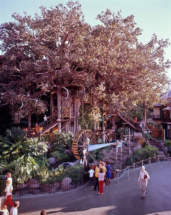 Vintage Swiss Family Robinson Treehouse attraction at Disneyland - 1975