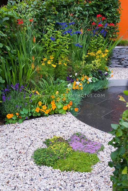 Thymus Thymes Herbs In Gravel Edged With Stell Circle And