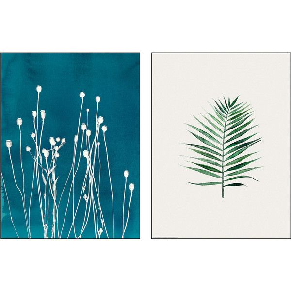 TVILLING Poster, set of 2 Swaying straws (45 SEK) ❤ liked on Polyvore featuring home, home decor, wall art, 2 piece wall art and twin pack