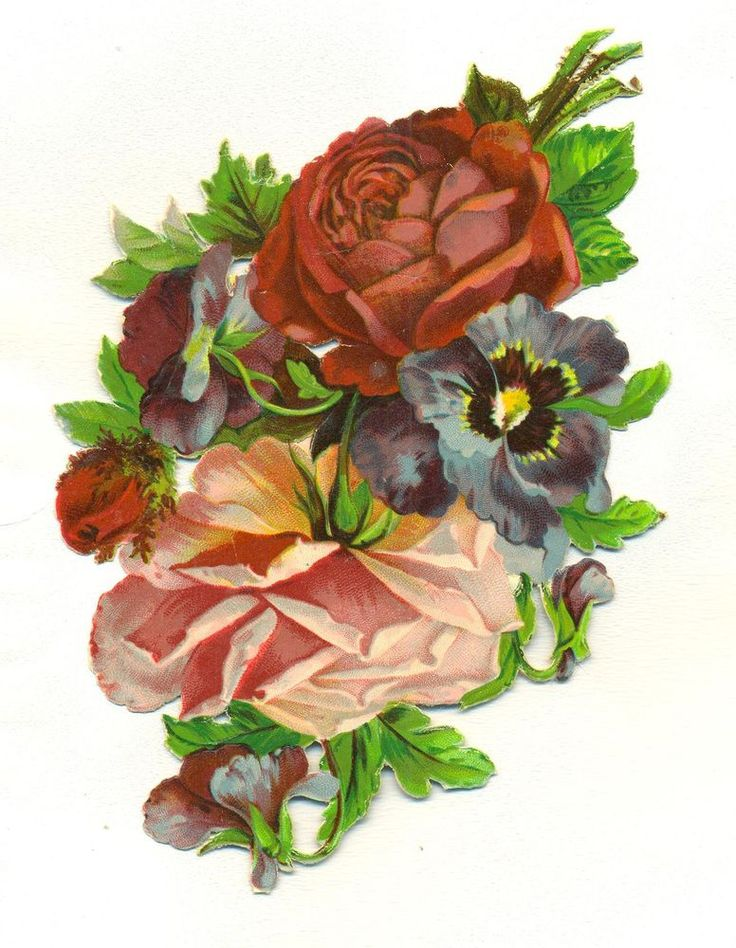 large victorian scrap  pansies and roses
