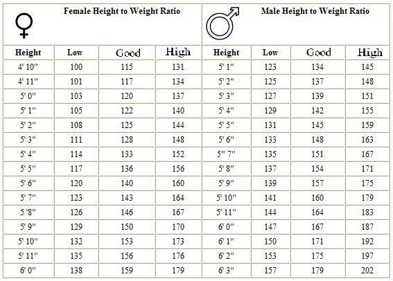 army weight standards - Google Search