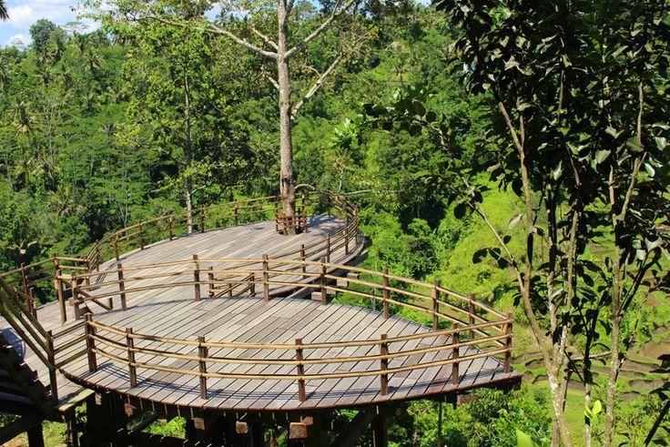 Essential Retreat Organizer Bali Ubud Yoga