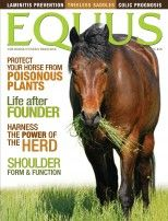 Equus: Guidelines Http Bit Ly Hlqlqh, Happy Horses, Guidelines Http Bit Ly Hrabp2, Horses Care, Magazines Submissive, Submissive Guidelines, Equus Magazines, Healthy Horses, Guidelines Http Bit Ly Hpgktp