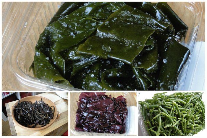 Edible seaweeds