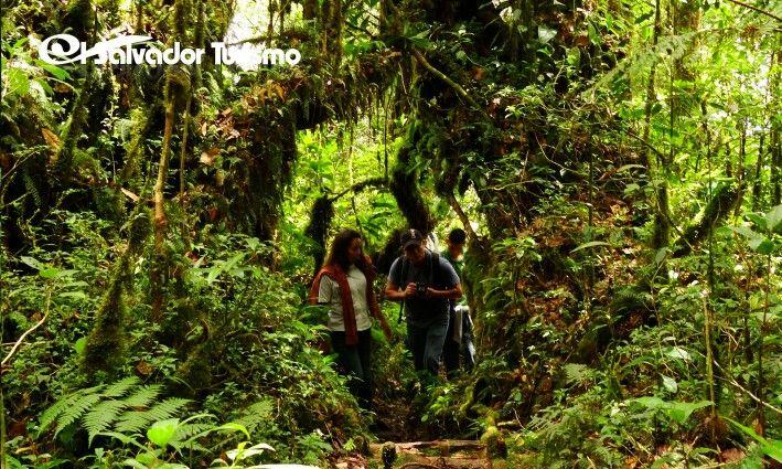 Parque Nacional Montecristo
