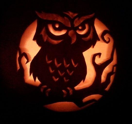 Owl pumpkin carving halloweenpumpkins pinterest
