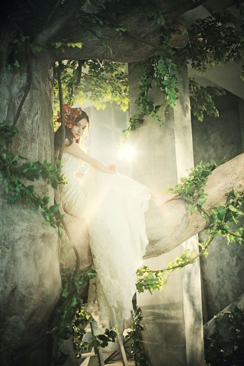 In The Enchanted Forest Fairy Tales Fairytale