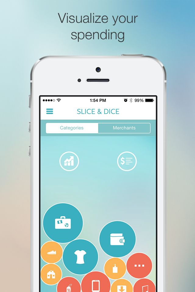Slice: Online Shopping Assistant. The Slice & Dice feature helps you visualize where you've spent your money. | Slice iOS app