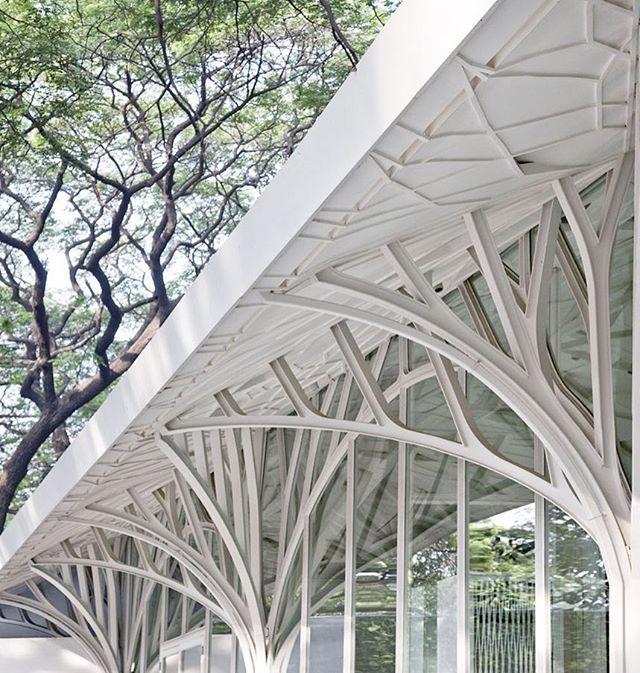 25 Best Ribbon Architecture Images On Pinterest