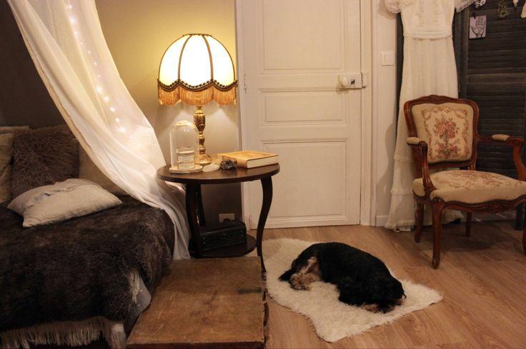 Fur & antique light