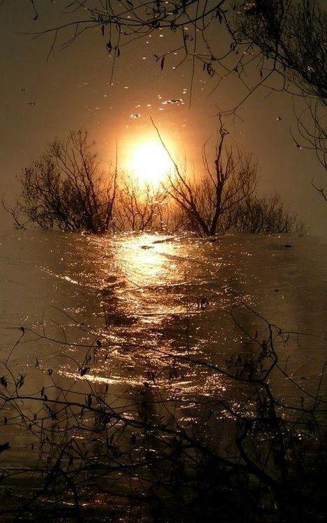 Sunset - reflection