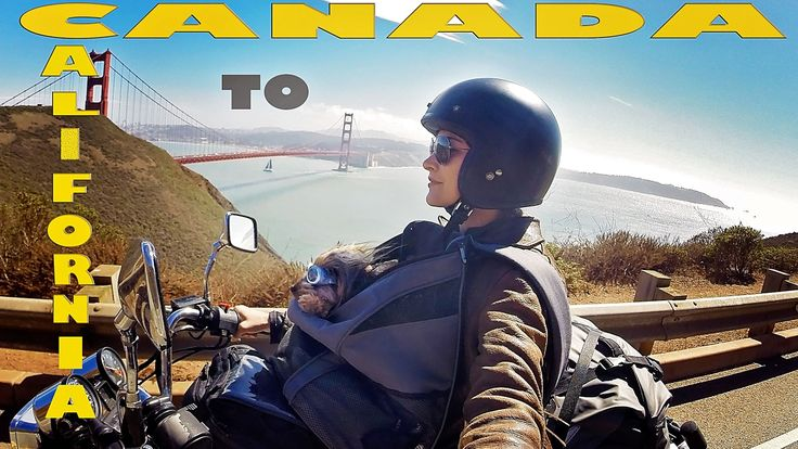 Canada to California- Solo gal and her dog's Epic motorcycle journey