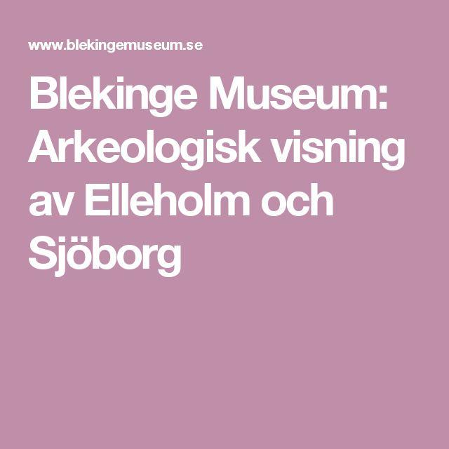 Blekinge Museum: Arkeologisk visning av Elleholm och Sjöborg