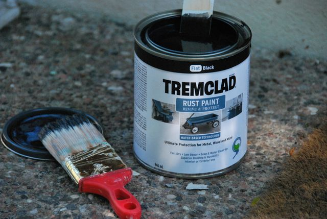 TremClad rust paint for metal door.  Water-based.  Charleston Green or Regal Red.  Home Depot $12.98