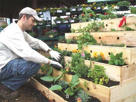tiered-urban-garden: Gardens Ideas, Gardens Boxes, Gardens Design Ideas, Urban Gardens, Potager Gardens, Rai Gardens Beds, Planters, Small Spaces, Veggies Gardens