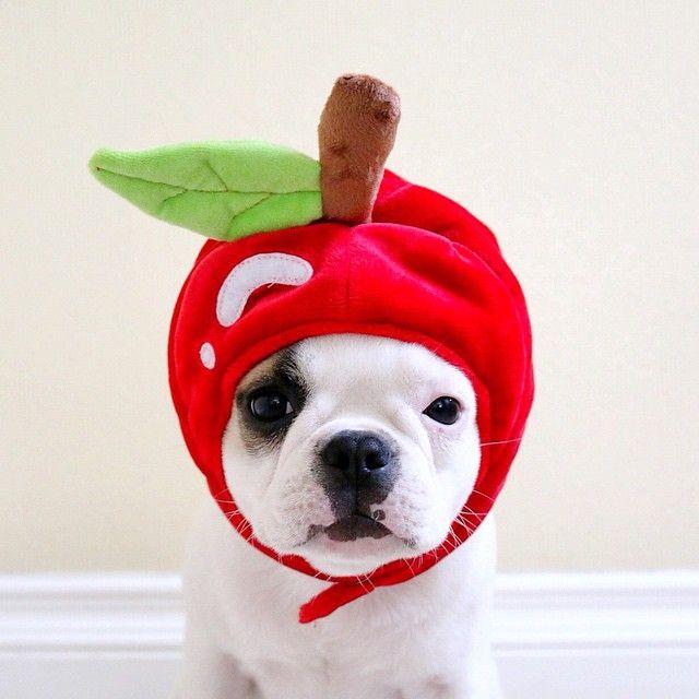 Cute Photos on Pixable