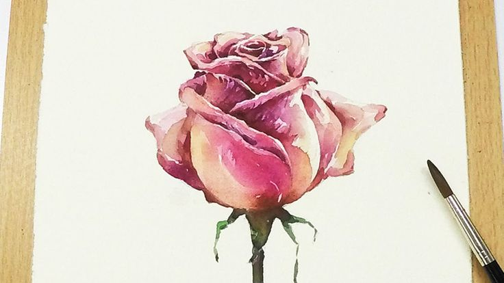 [LVL5] How to paint a Rose in watercolor - Step by Step Tutorial