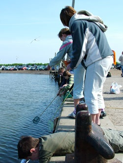 Crab fishing Blakeney Quay Norfolk UK-great fun for all the family