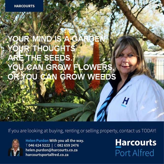 #HarcourtsPortAlfred #PortAlfred #WhereServiceCounts #PositiveAttitude #Motivation #PersonalGrowth