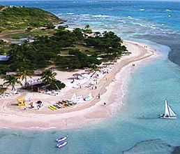 Palomino Island; private island available for El Conquistador guests to visit by catamaran! roosters everywhere!