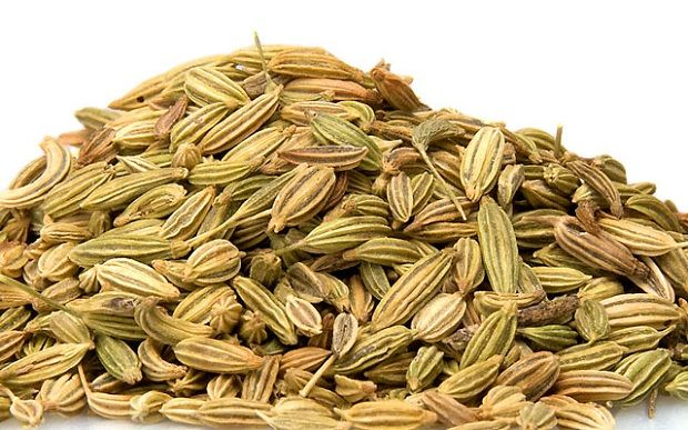 fennel-seeds[1]