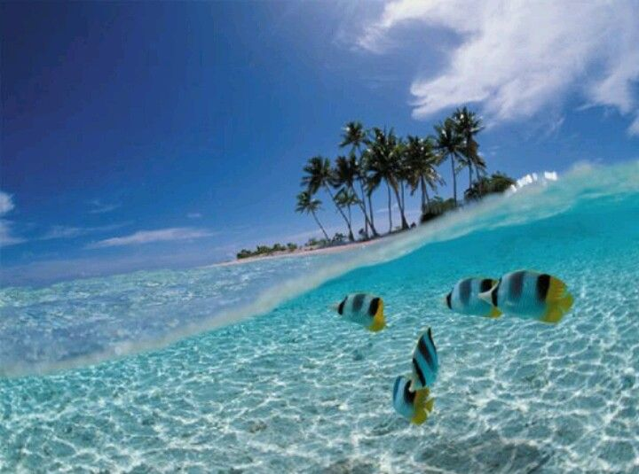 My next destination, by the way. Lombok island. #Finnmatkat